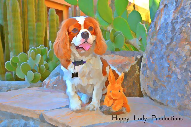 Lady and Phoe-Phoe in The Phoenician Resort's Cactus Garden