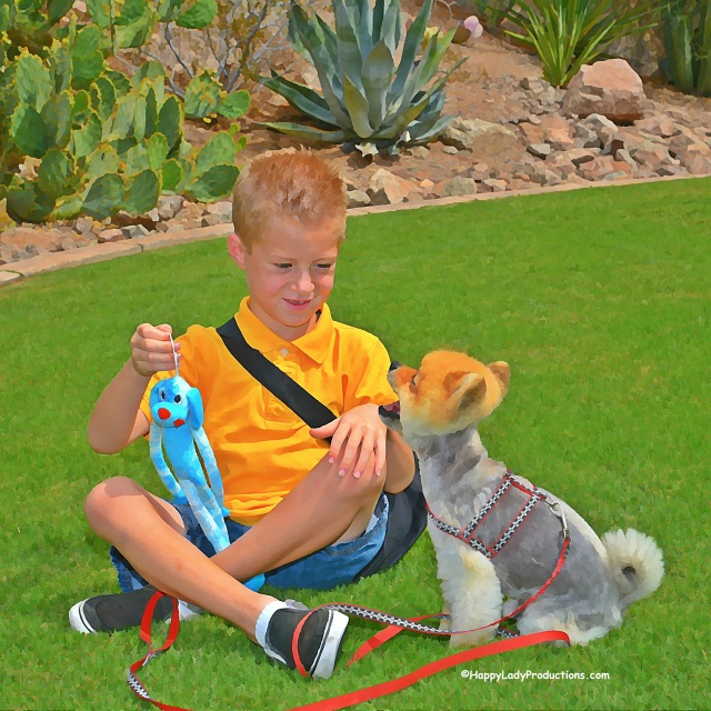'Benjamin' receives a little pet therapy from local celebrity dog, Snickers, in 'Discover The Phoenician with Phoe-Phoe & FRiends'. Photo illustration created at The Canyon Suites, The Phoenician Resort