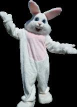 Bunny_cutout